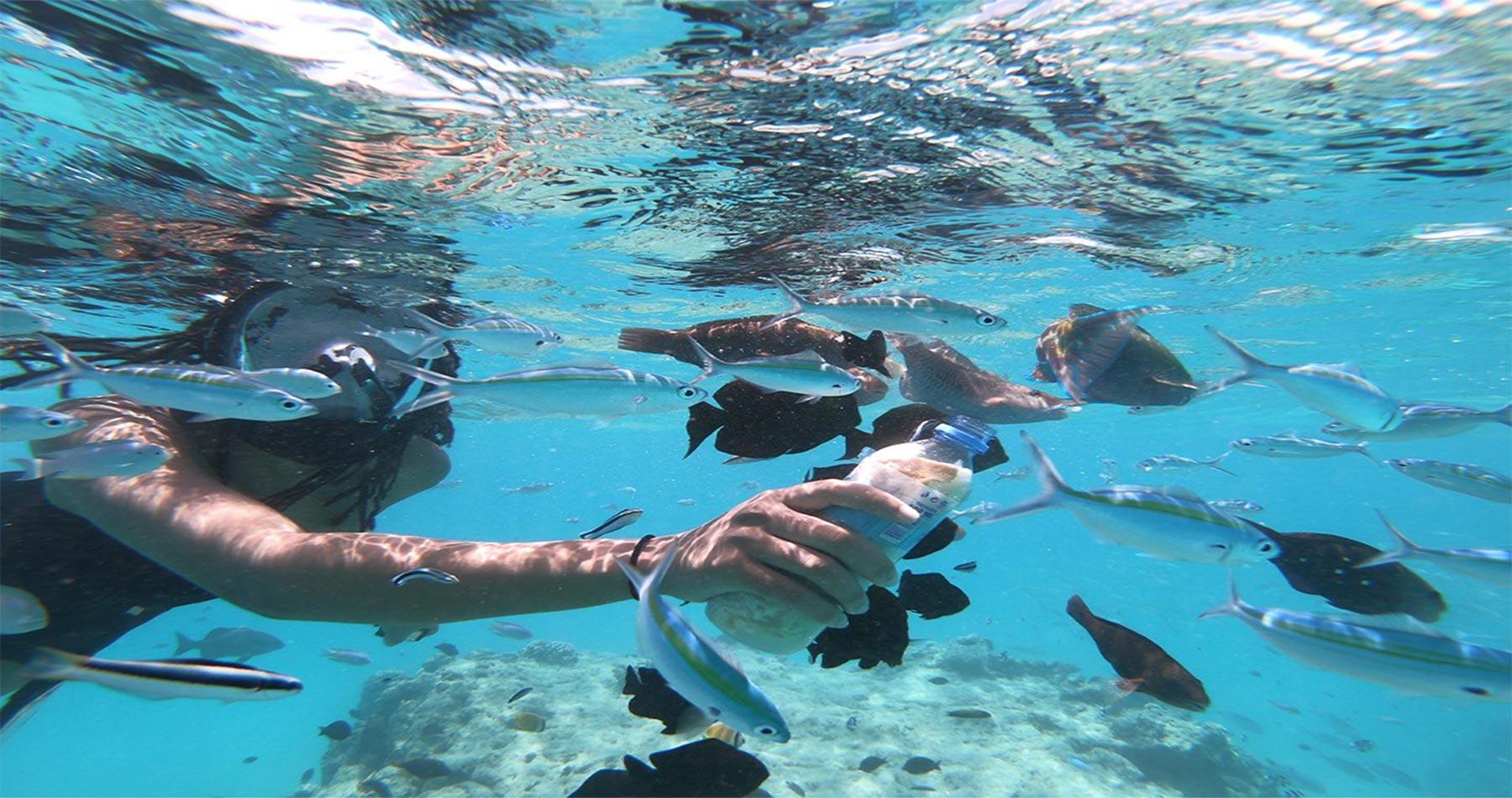 rhodes experiences h2o diving 10