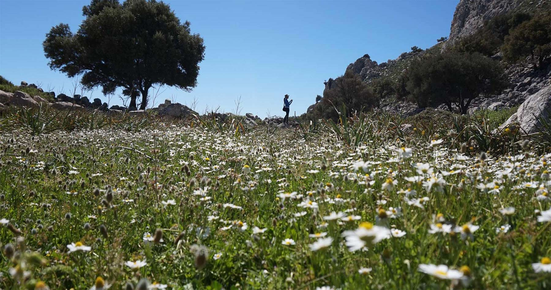 Rhodes Experiences Lindos Hiking 4