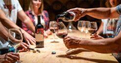rhodes experiences wine tasting 1