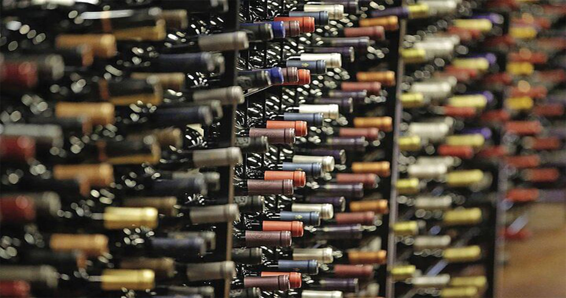 rhodes experiences wine tasting 7
