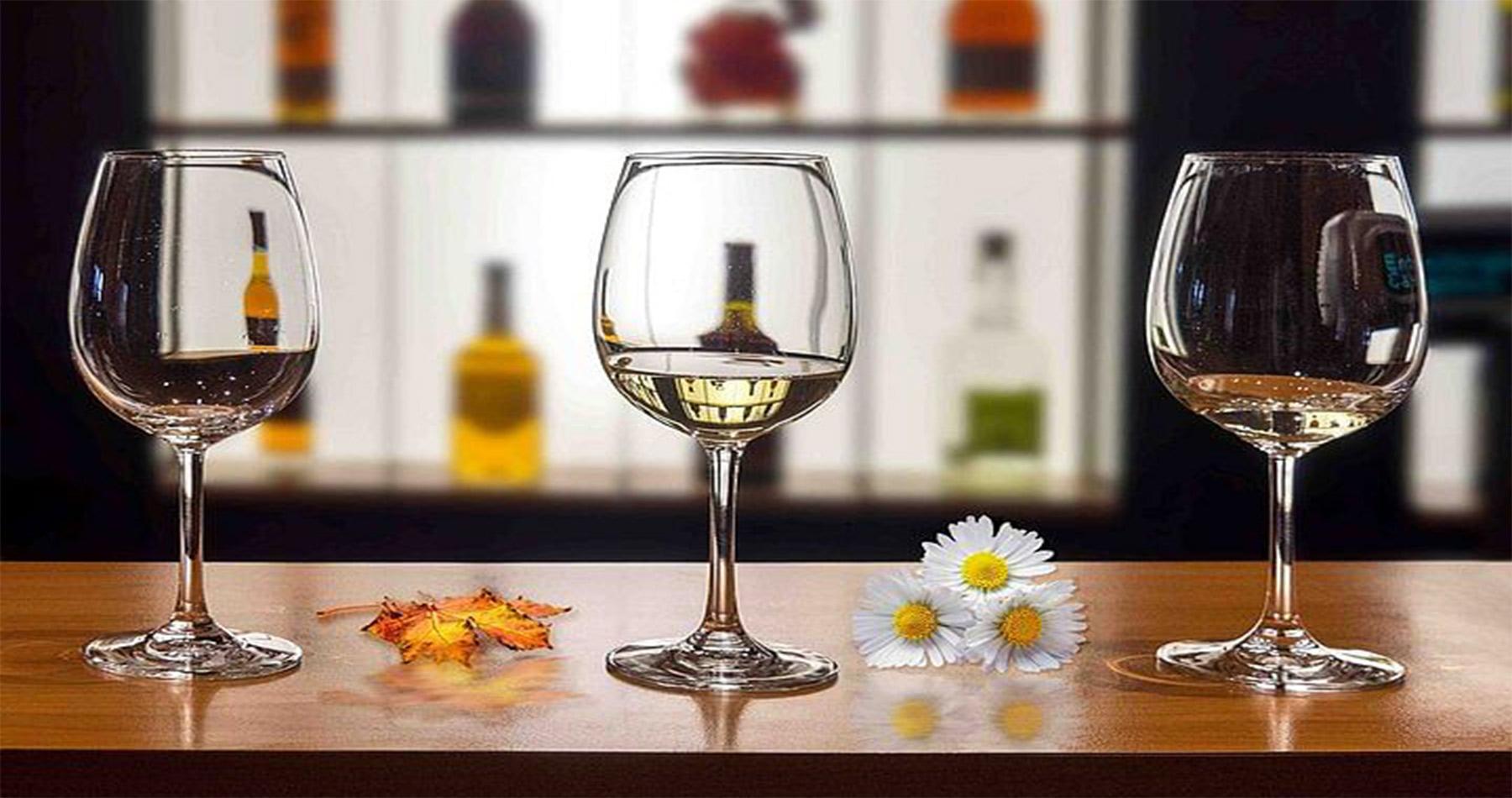 rhodes experiences wine tasting 9